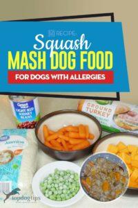 Delicious Squash Mash Dog Food for Allergic Dogs Recipe