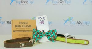 Perfect Dog Gift Giveaway