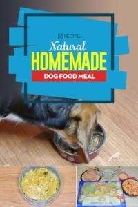 My Favorite Natural Homemade Dog Food Meal Recipe