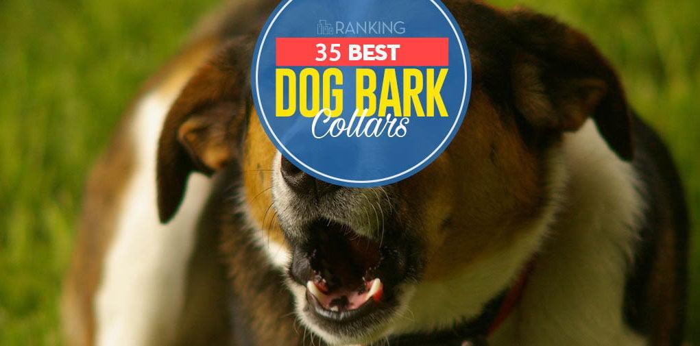 Top 35 Best Dog Bark Collar Options in 2019