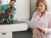 5 Emergency Vet Care Financing Options