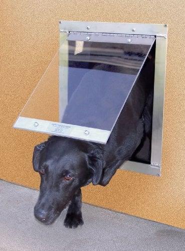 Top 40 Best Dog Door Choices In 2019 For Walls Screens And Doors