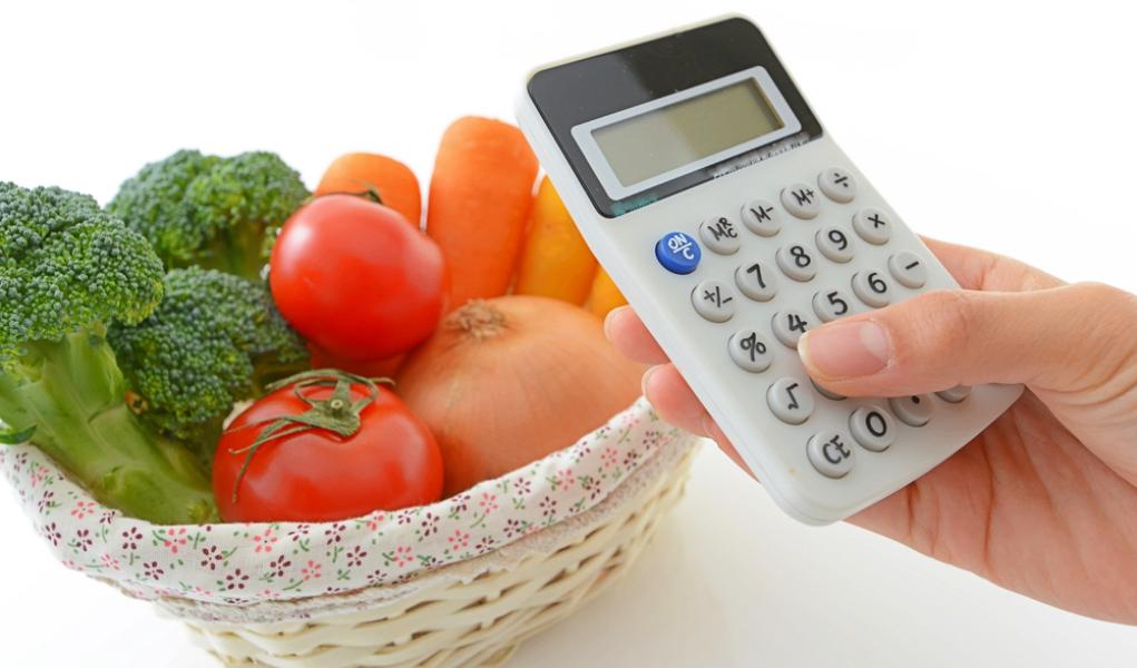 Homemade Dog Food Recipe Calculator