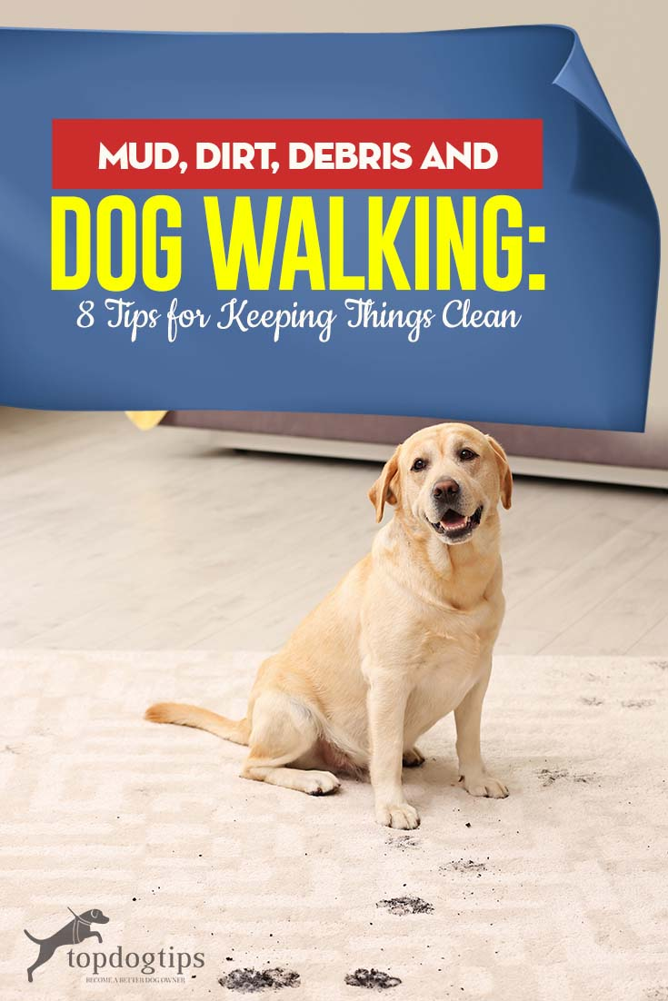 Mud, Dirt, Debris and Dog Walking - Best 8 Tips for Keeping Things Clean