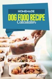 My Homemade Dog Food Recipe Calculator