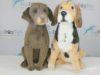 Petsies Custom Stuffed Animal Giveaway