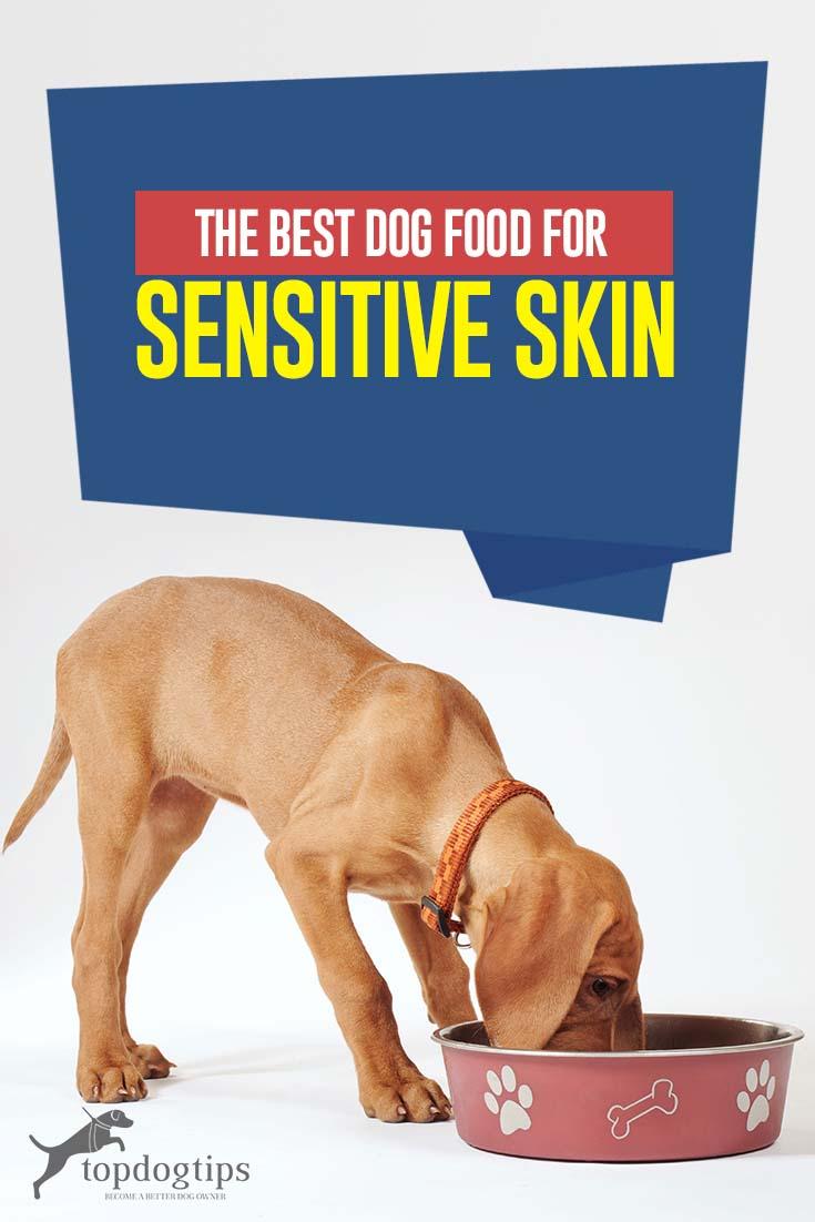 Top Best Dog Food for Sensitive Skin