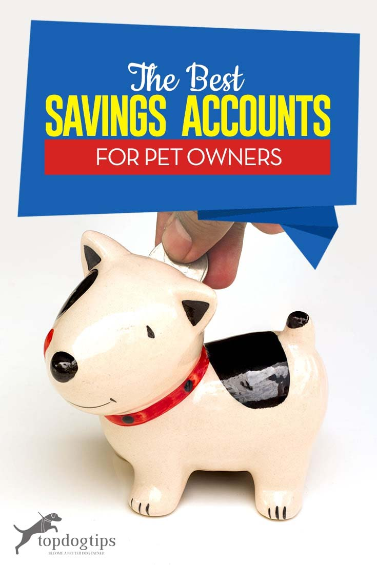 Top Best Savings Accounts for Pet Owners