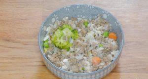Homemade Dog Food for Urinary Tract Health