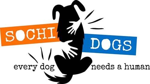 Sochi Dogs Rescue