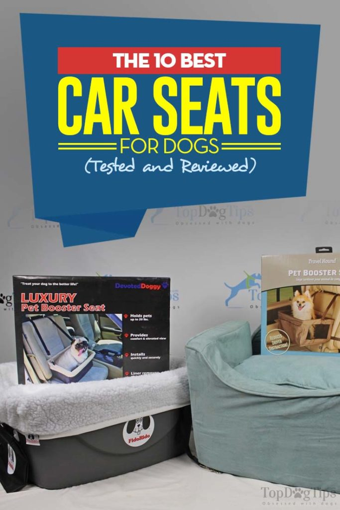 The Best Dog Car Seat Brands