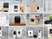 Top 10 Best Dog Cameras 2020
