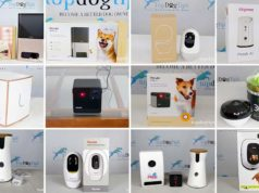 Top 10 Best Dog Cameras 2020