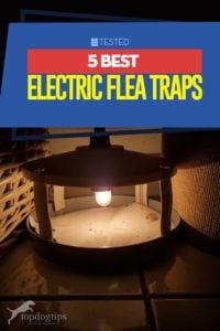 Top 5 Best Electric Flea Traps