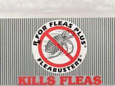 Best Flea Trap Types