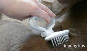 happyhund Dog Brushes
