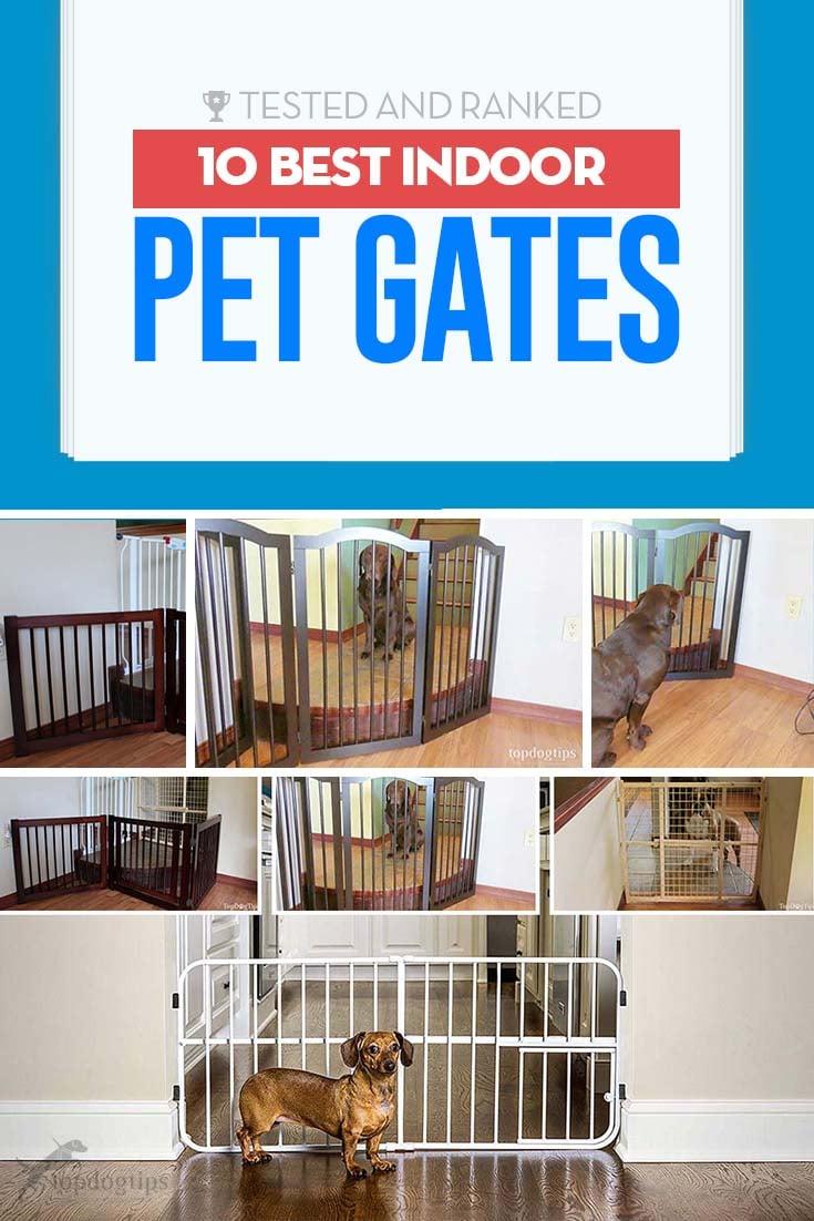 Top 10 Best Indoor Pet Gates
