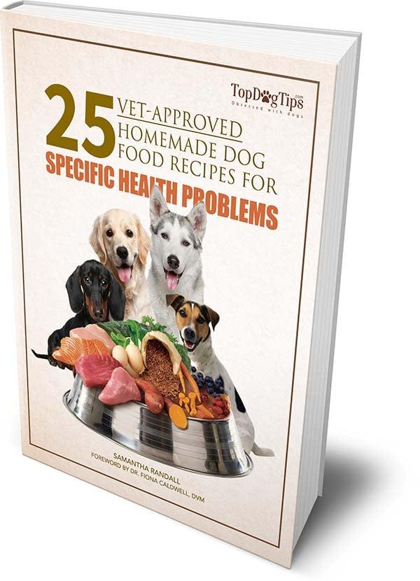 25 Vet Approved Homemade Dog Food