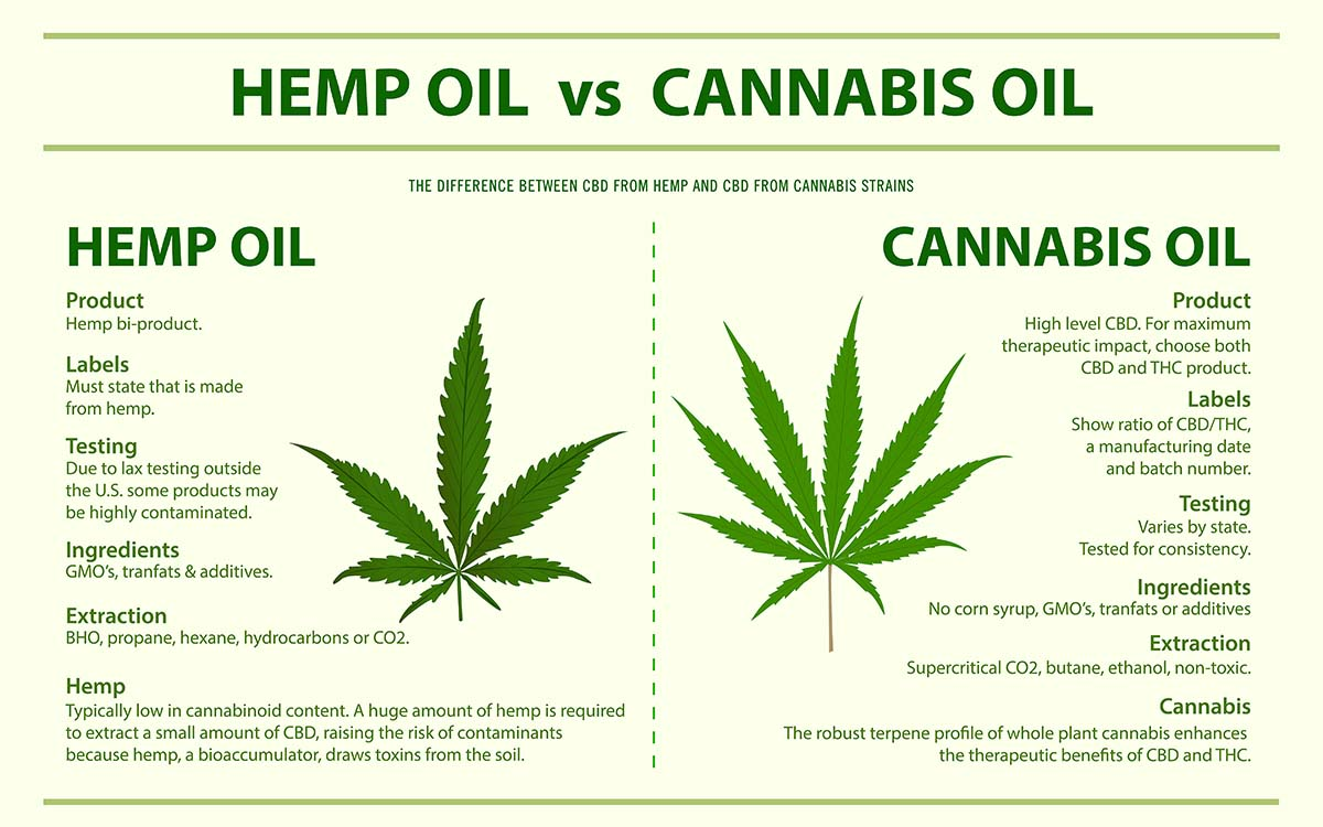 Best Hemp Oil for Dogs, Different to CBD Oil and Known Benefits