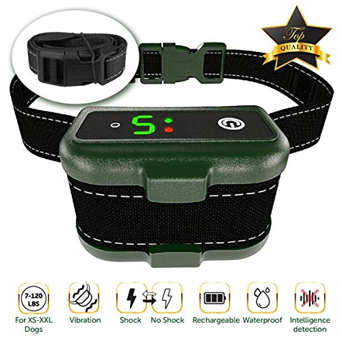 TBI Pro Dog Training Collar with Remote
