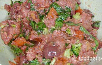 Planet Paws Dog Food Recipe