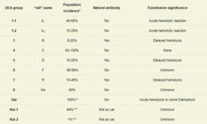 Dog blood types chart