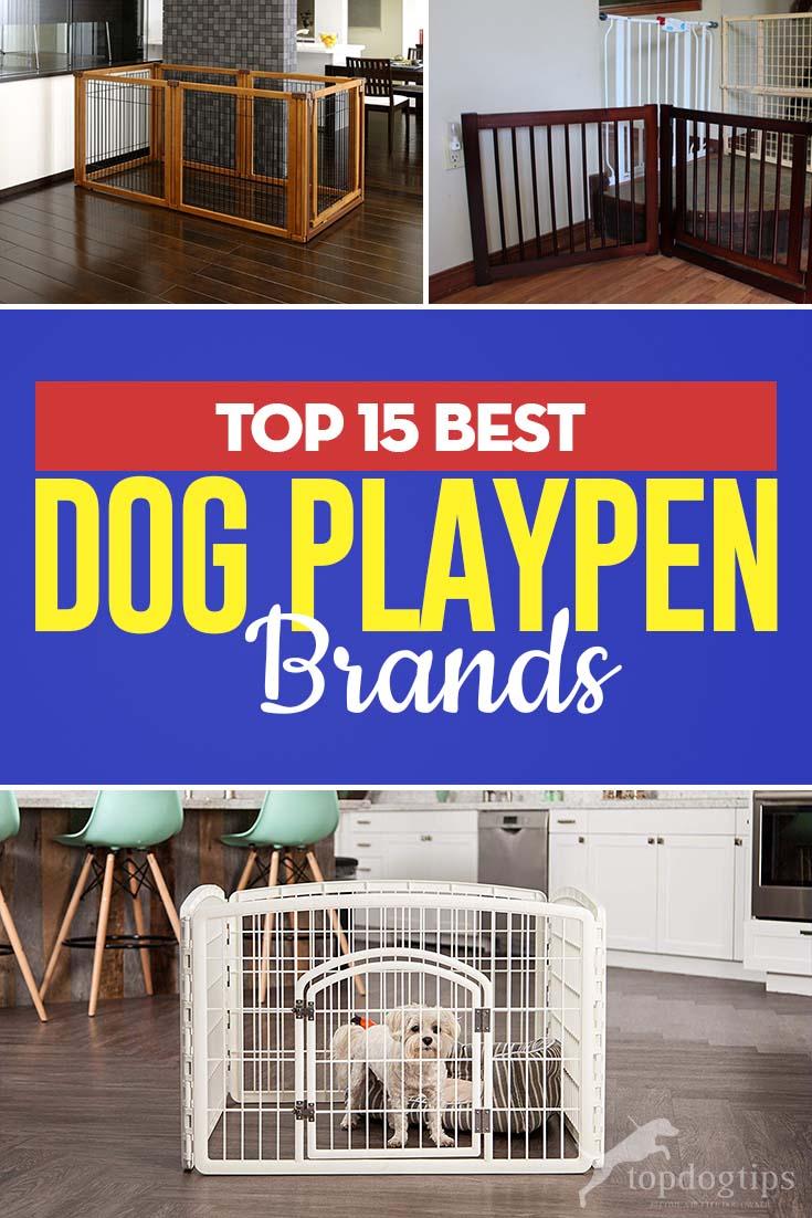The 15 Best Dog Playpen Brands