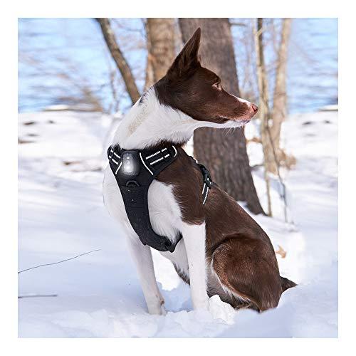 Rabbitgoo Light-Up Dog Harness