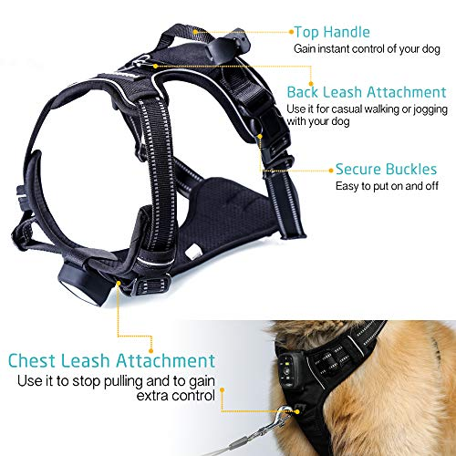 Rabbitgoo Light-Up LED Dog Harness