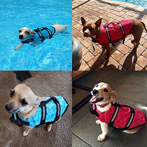 HAOCOO Dog Life Jacket Vest Swimsuit
