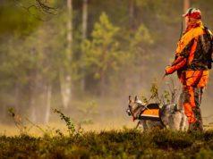 Best Dog Hunting Vest