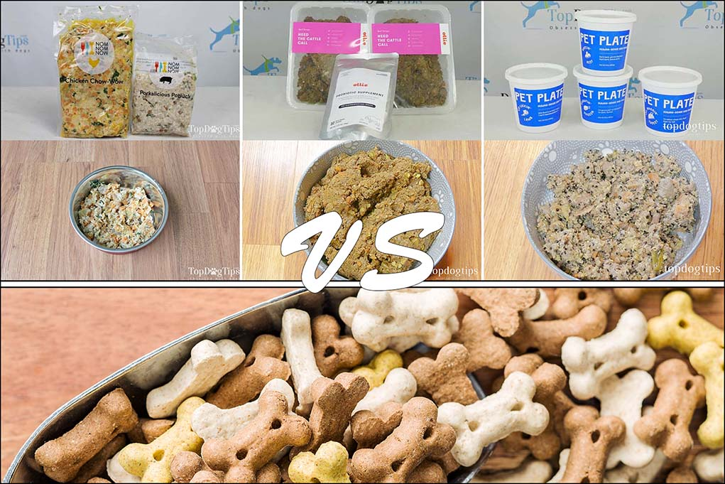 Compare Dog Food >> Comparing Costs Of Fresh Dog Food Delivery Vs Store Bought