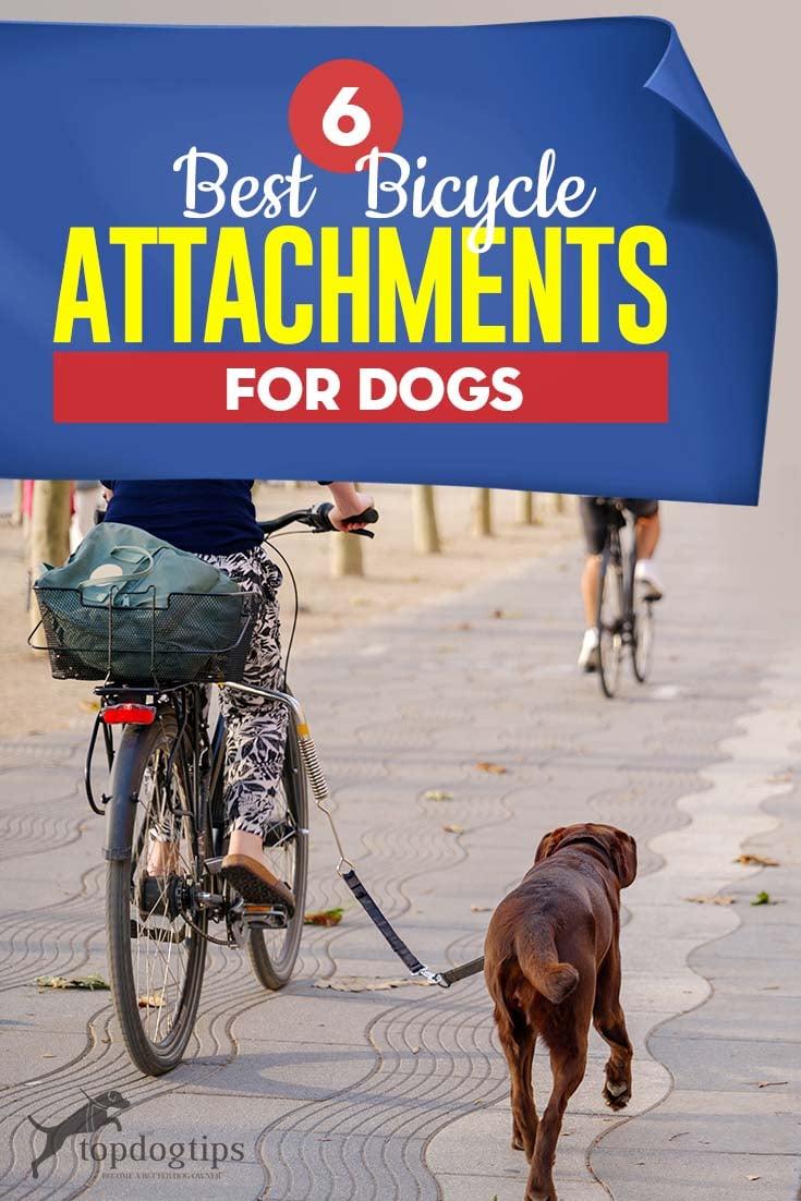 Top 6 Best Dog Bike Attachment Brands