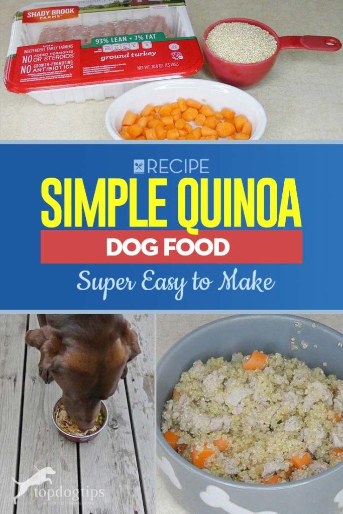 Recipe of Simple Quinoa Dog Food