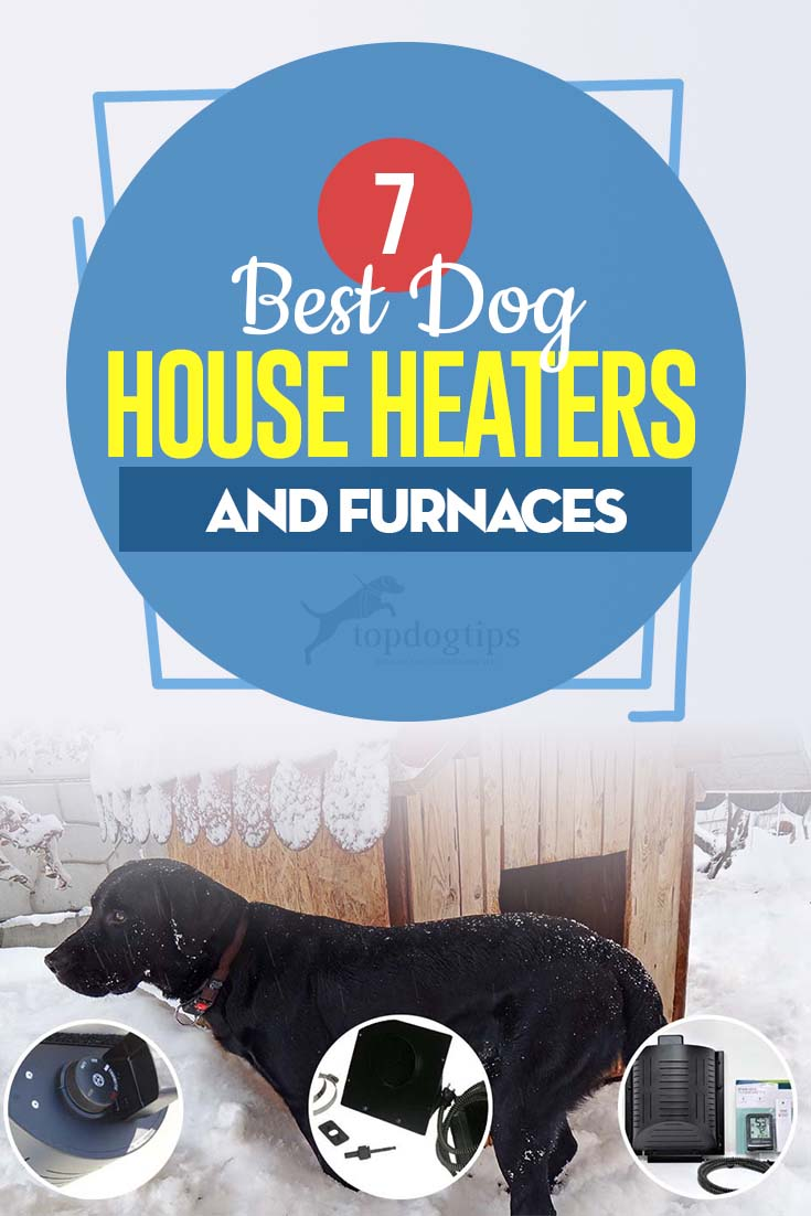 Top 7 Best Dog House Heaters and Furnaces