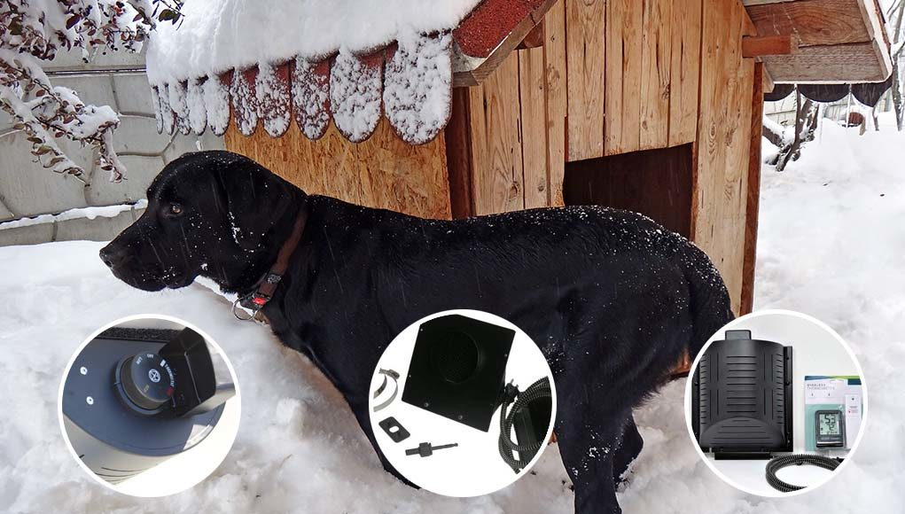 7 Best Dog House Heaters And Furnaces For Cold Winters In 2020
