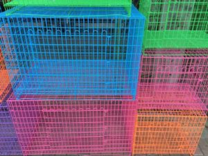 Dog Crates - Prejudices, History and Facts