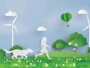 Most Eco-friendly, Organic Dog Supplies and Products
