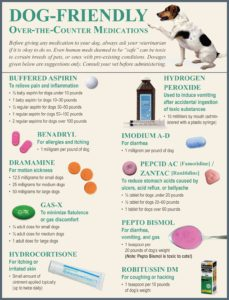 Dog-friendly over the counter pain meds for dogs