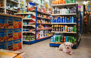 How Dogs Influence Your Shopping Habits