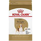 Royal Canin Beagle Breed Health Nutrition