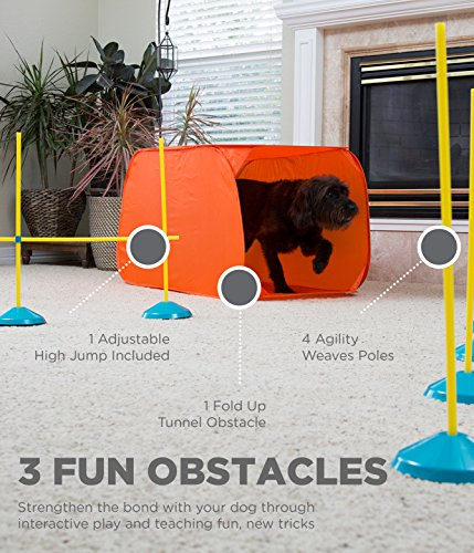 Zip Zoom Indoor Starter Kit  from Outward Hound