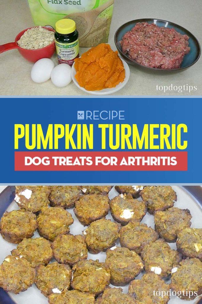 Recipe of Pumpkin Turmeric Dog Treats for Arthritis