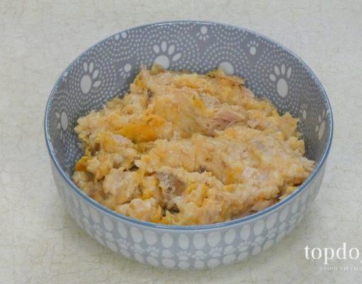 shrimp dog food