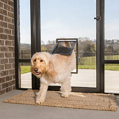 Pet Storm Door with Dog Door by PetSafe