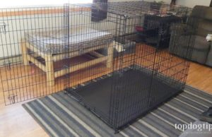 Frisco XXL Dog Crate
