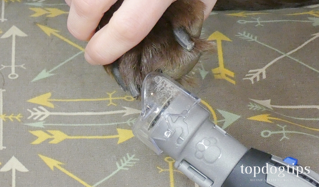Dremel PawControl Dog Nail Grinder Review