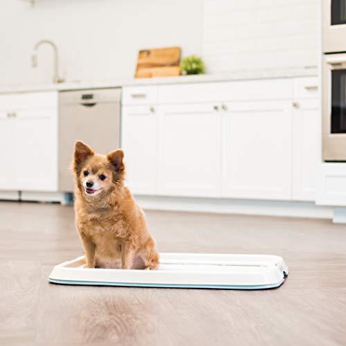 IRIS Puppy and Dog Training Pet Pad Holder by IRIS USA, Inc.