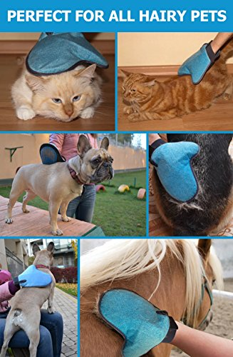 Pat Your Pet 2-in-1 Pet Grooming Mitt by Pat Your Pet