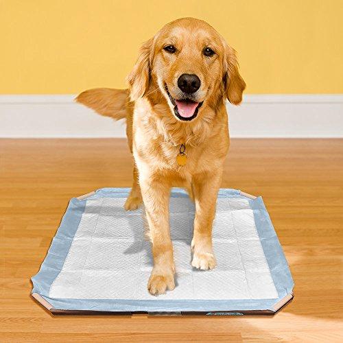 Vet's Best Floor Protection Dog Pad Holder by Vet's Best